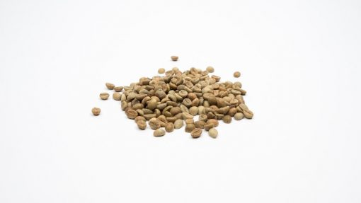 Indiase Arabica Plantation losse Ongebrande Koffiebonen