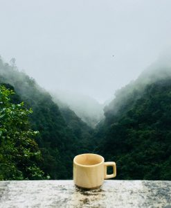 Koffiebonen abonnement groene koffiebonen