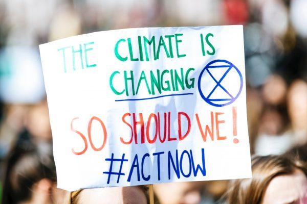 Groene Koffie en klimaatverandering